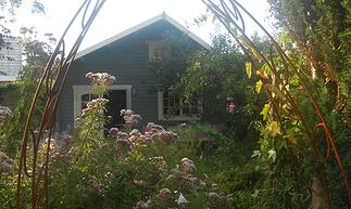 Lizzie Enfield and Araminita Hall