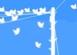 8 reasons to tweet