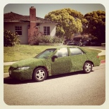 grass covered car