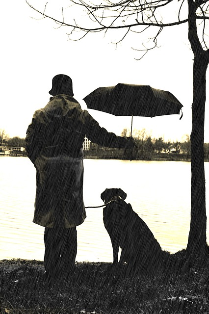 man and dog 1327216_640