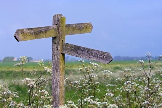 signpost-164908_640